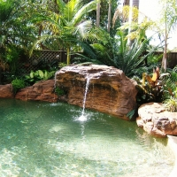 grand polynesien