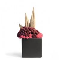 brunia-rouge #022